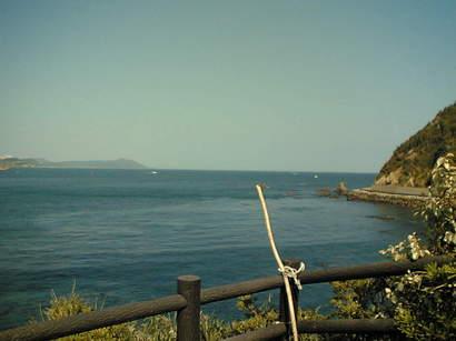 06-5-4神島から伊良湖岬遠景.JPG
